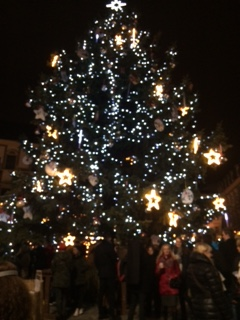 Christmas Tree in Brno
